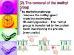 2 the removal of the methyl group