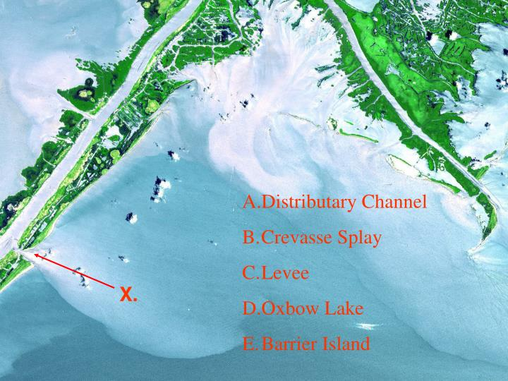 Distributary Channel