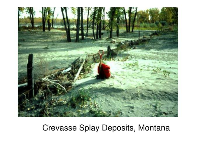 Crevasse Splay Deposits, Montana