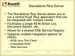 standalone rice server