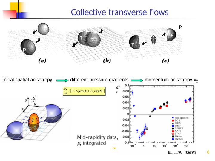 Collective transverse flows