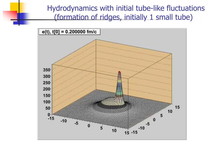 Hydrodynamics with initial tube-like fluctuations