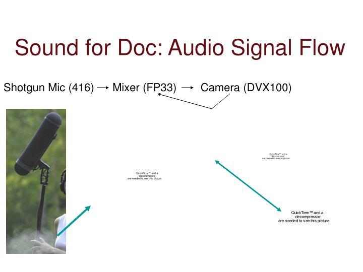 Sound for Doc: Audio Signal Flow