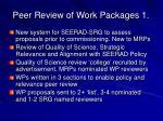 peer review of work packages 1