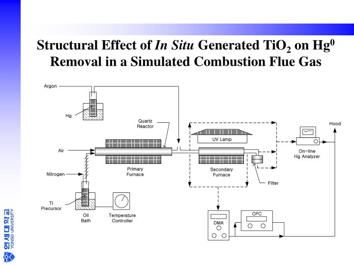 Structural Effect of