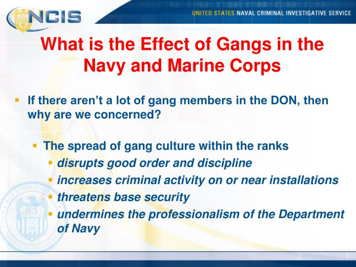 What is the Effect of Gangs in the Navy and Marine Corps