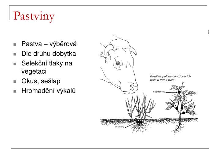 Pastviny