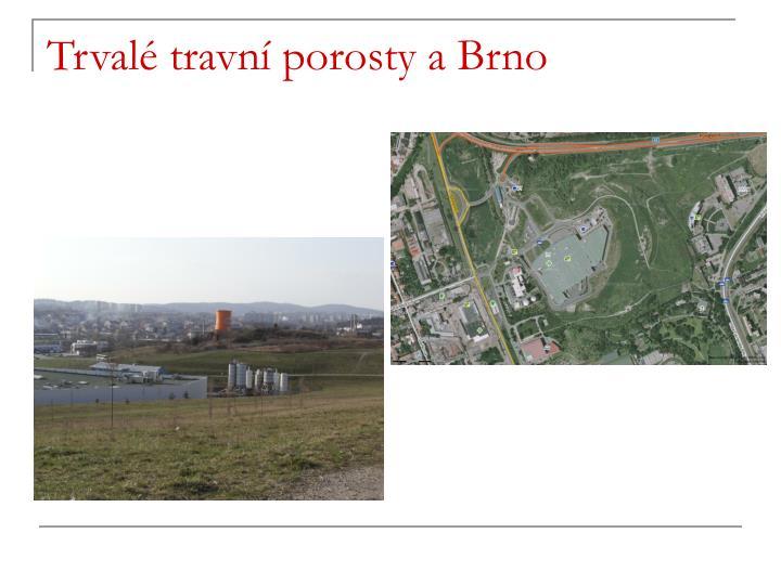 Trvalé travní porosty a Brno