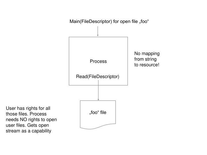 "Main(FileDescriptor) for open file ""foo"""