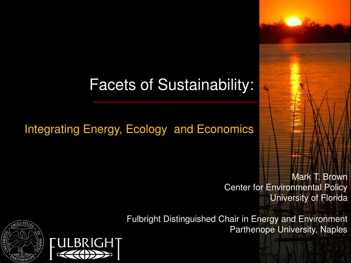 Facets of Sustainability: