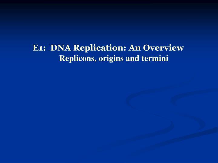E1:  DNA Replication: An Overview