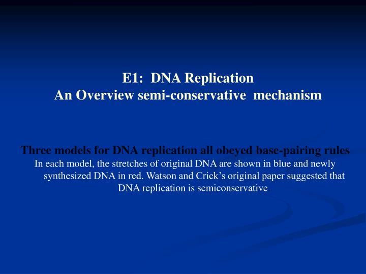 E1:  DNA Replication