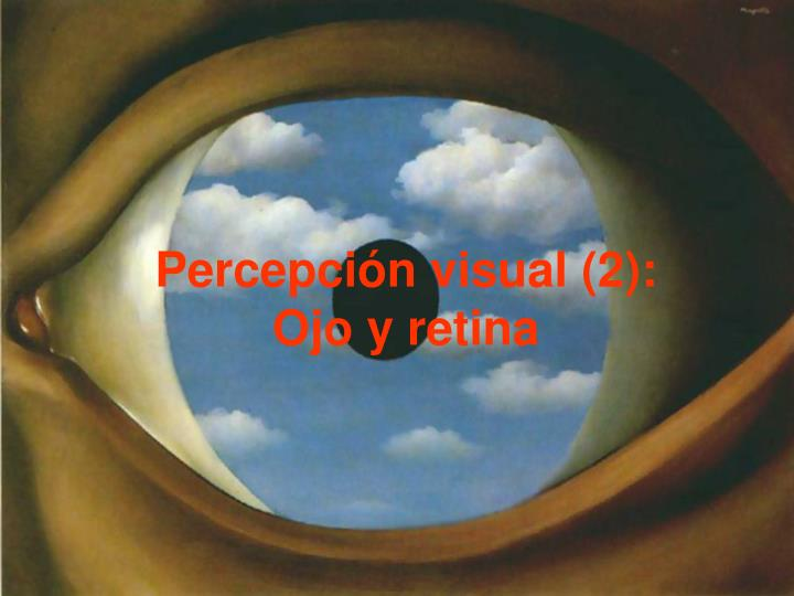 Percepción visual (2):
