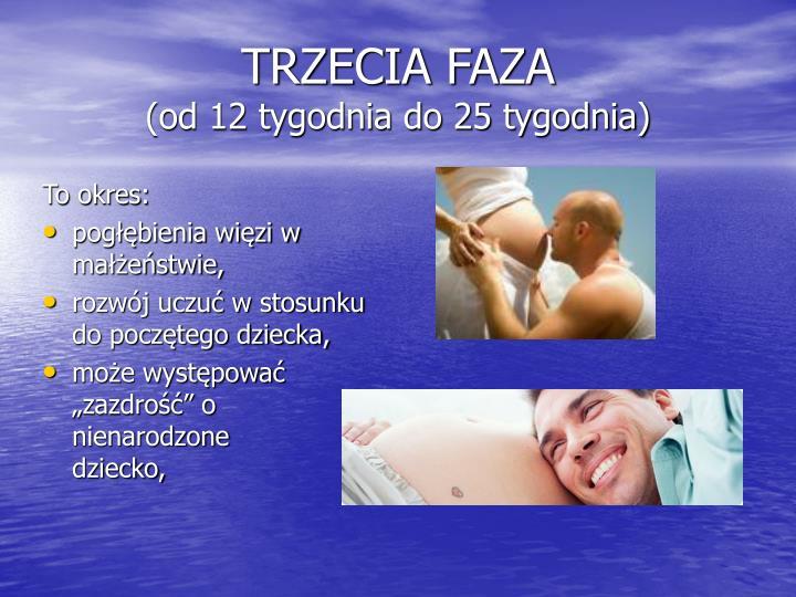 TRZECIA FAZA