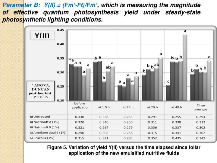 Parameter B:  Y(II) = (Fm'-Ft)/Fm'