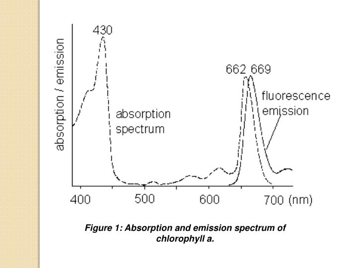 Figure 1: Absorption and emission spectrum of chlorophyll a.