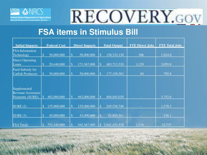 FSA items in Stimulus Bill