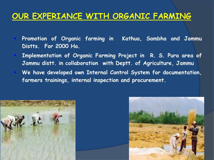 OUR EXPERIANCE WITH ORGANIC FARMING