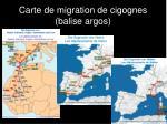 carte de migration de cigognes balise argos