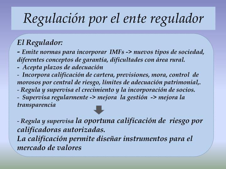 Regulación por el ente regulador