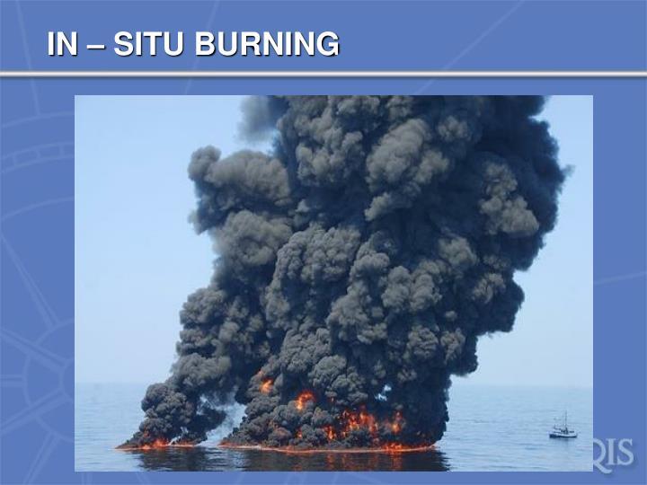 IN – SITU BURNING