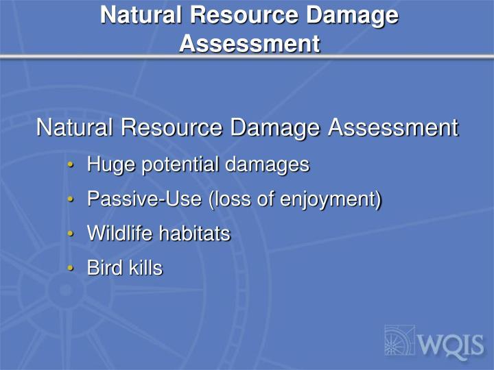 Natural Resource Damage Assessment