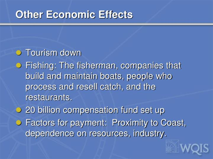 Other Economic Effects