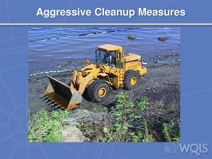 Aggressive Cleanup Measures