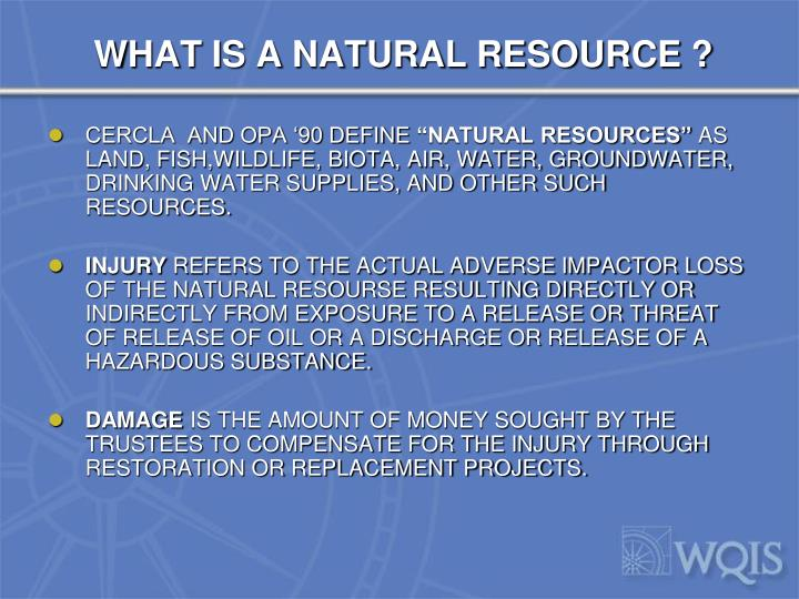 WHAT IS A NATURAL RESOURCE ?