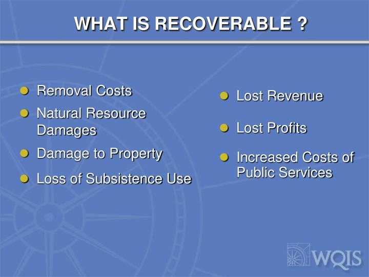 WHAT IS RECOVERABLE ?