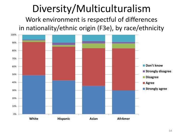 Diversity/Multiculturalism