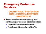 emergency protective services