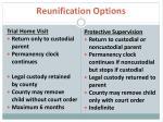 reunification options