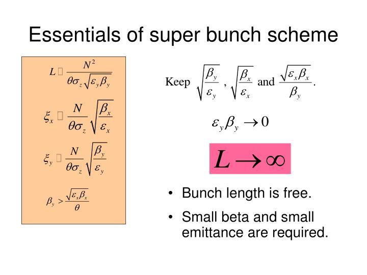 Essentials of super bunch scheme