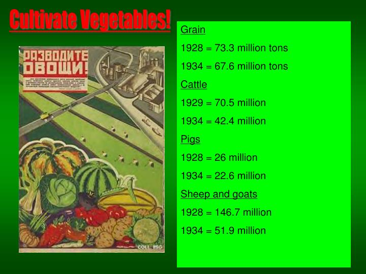 Cultivate Vegetables!