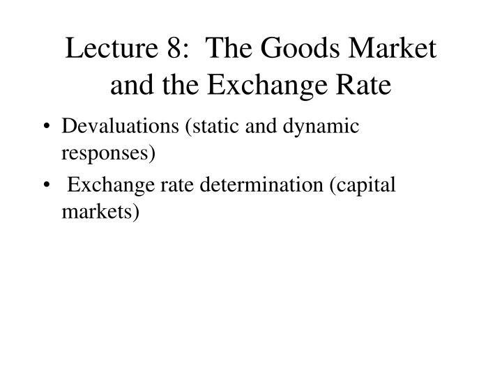 lecture 8 the goods market and the exchange rate n.
