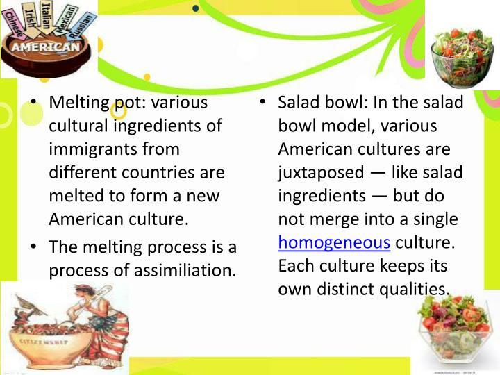 Melting pot essay