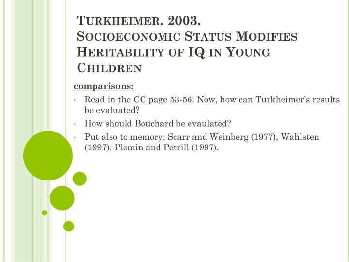 Turkheimer