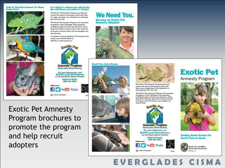 Exotic Pet Amnesty Program brochures to promote the program and help recruit adopters