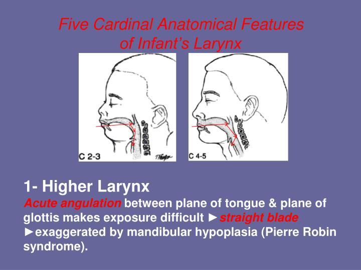 PPT - Pediatric Airway Management: An Update PowerPoint Presentation ...