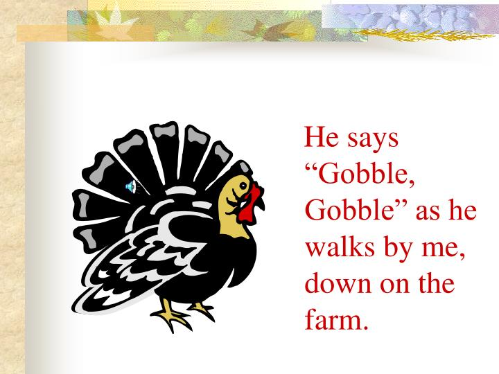"He says ""Gobble, Gobble"" as he walks by me, down on the farm."
