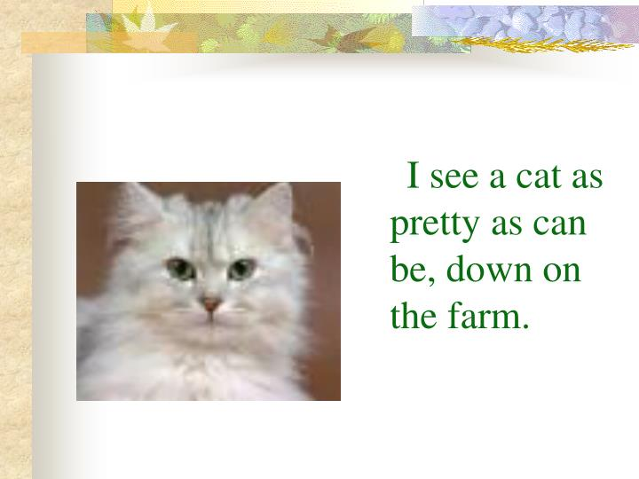 I see a cat as pretty as can be, down on the farm.