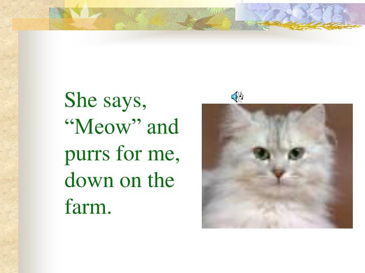 "She says, ""Meow"" and purrs for me, down on the farm."