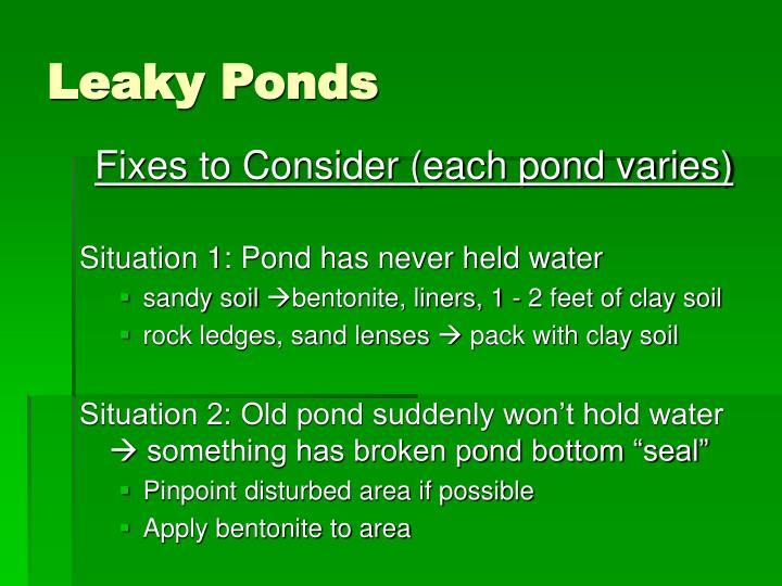Leaky Ponds