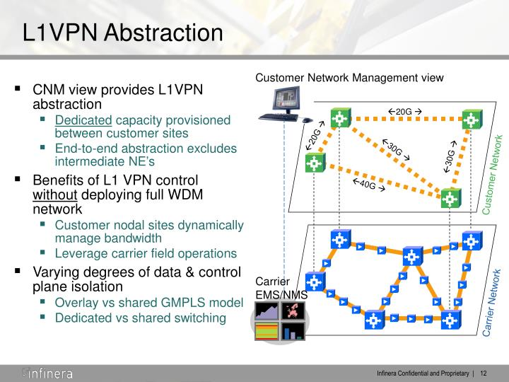 CNM view provides L1VPN abstraction