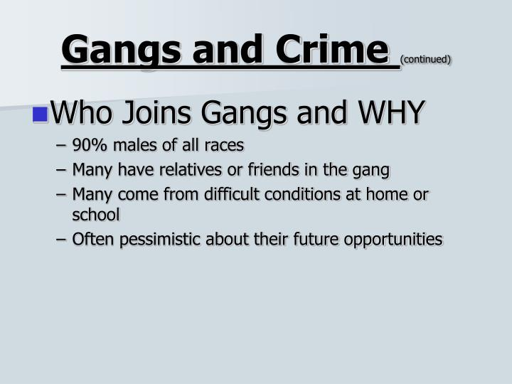 Gangs and Crime
