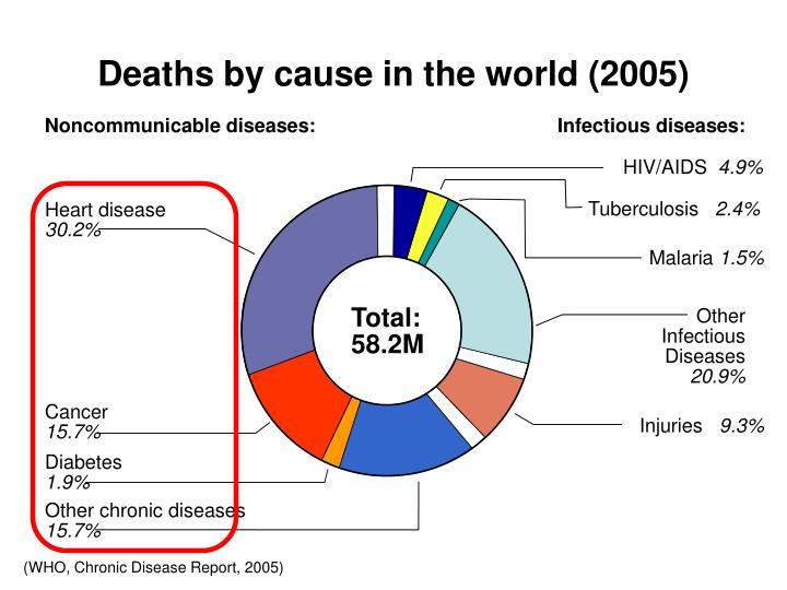 Deaths by cause in the world (2005)