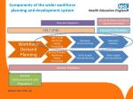components of the wider workforce planning and development system