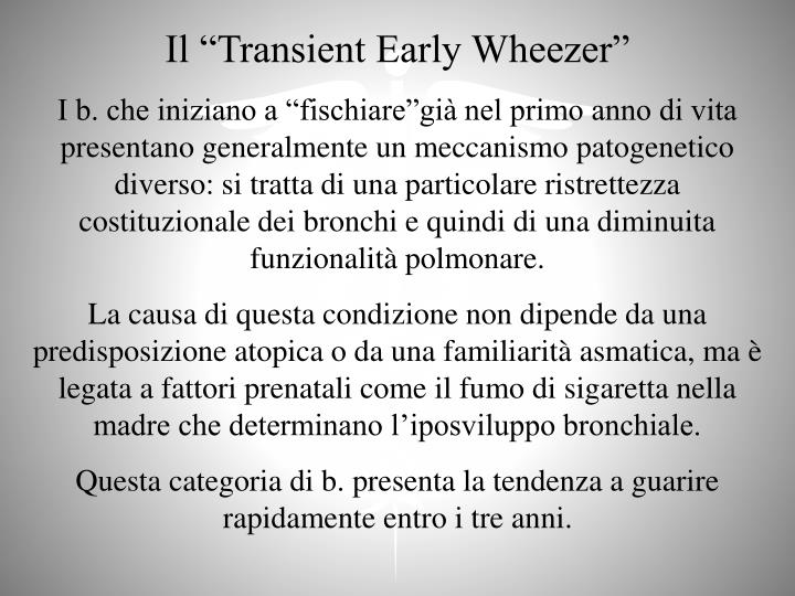 "Il ""Transient Early Wheezer"""