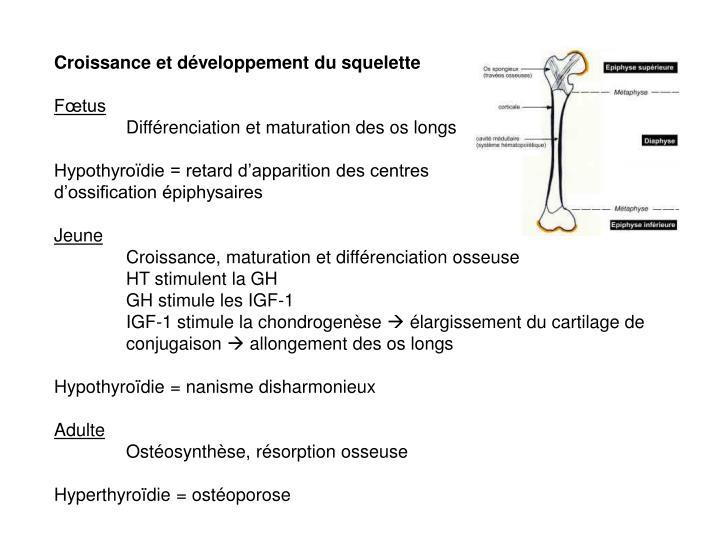 Croissance et développement du squelette
